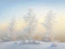 Winter Solstice by Ilgvars Rauda