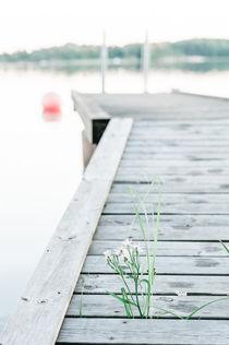 Sommer in Schweden von Ruby Lindholm