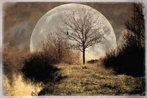 Magical Moorlandscape von freedom-of-art