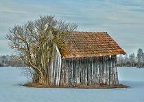 Hütte im Winter von Peter Bergmann