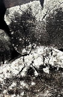 Digital Art Holz  von Alesia Verenich