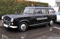 Polizeiauto aus Frankreich von shark24