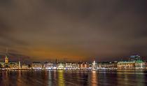 Hamburg: Skyline by Roland Scheibner