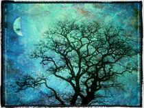 Winterbaum bei Nacht von freedom-of-art