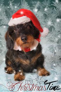 Christmas Time / 10 von Heidi Bollich