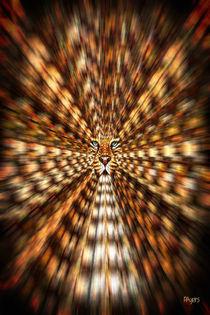 Animal Magnetism von Paula Ayers
