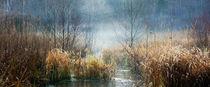 winter solstice von Thomas Matzl