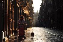 Morning at Pamplona, Navarra, Spain by Joao Coutinho