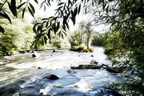 Am reißenden Fluss by Sonja Teßen