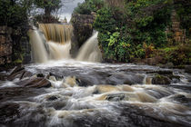 Penllergare Waterfall by Leighton Collins