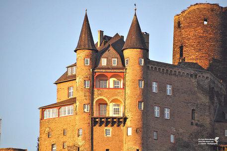 Burg-katz-2015-10-11-10221