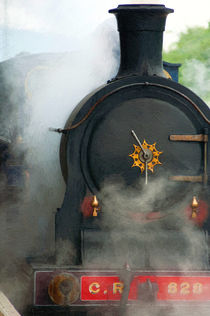 Caledonian Railway Number 828 by Andrew Michael