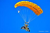 Jetpack-Flieger landet am Gleitschirm von shark24