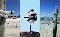 On the Beach by Gloria Jean  Keller