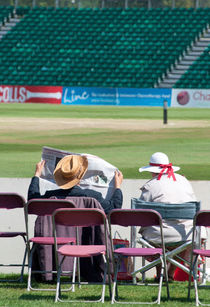 Cricket spectators by Andrew Michael