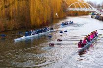 Rowers von Andrew Michael