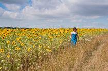 Sunflower girl von Andrew Michael