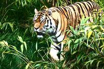 Tiger walking  von Andrew Michael