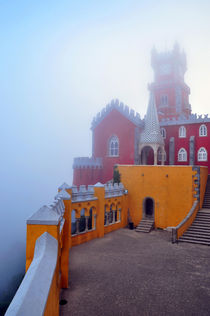 Pena Palace, Sintra, Portugal by Joao Coutinho