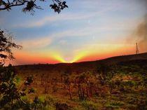 Sunset by Renato Viana