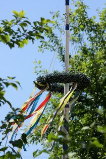 Frühling, lass die bunten Bänder wehen... by lizcollet