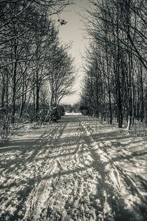 Winter way I von Roland Hemmpel