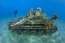 The Tank von Norbert Probst