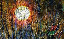 Sonnen-Geflecht |  Solar Plexus  |  Plexo del Sol von artistdesign