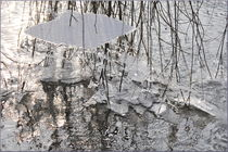 Winterzauber by Irmtraut Prien