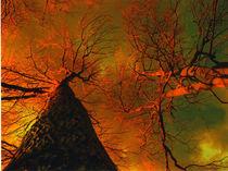 Psychedelischen Traum by Bill Covington