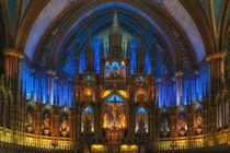 Notre-Dame & Altar by Luis Henrique de Moraes Boucault