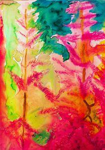pink Astilbe- rosa Prachtspiere by Maria-Anna  Ziehr
