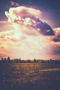 Wolke über Dosenmoor von Peter Eggermann