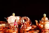 Haushaltsexpertinnen  von lizcollet