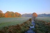 Herbstmorgen am Bach 4 by Bernhard Kaiser