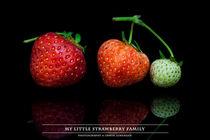My little Strawberry Family von Erwin Lorenzen