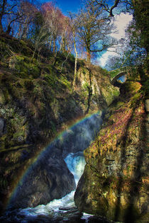 Secret Rainbow by Vicki Field