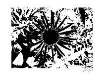 roter Sonnenhut von Stephanie Kirchner