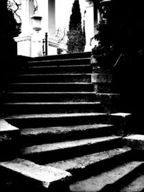 ladder #2 by Dmitriy Sosna