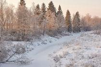 Winter landscape, frozen river, forest, snow von Maksim Drozdov