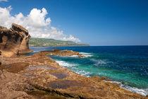 Islands von Gaspar Avila