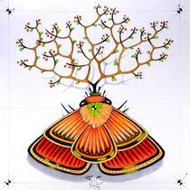 tree moth von federico cortese