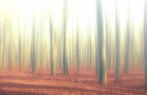 Wald Kunst by Heiko Döhrling