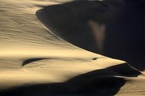 Wüstendetail von Nicola Furkert