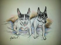 Two Toy Fox Terriers by Deborah Willard