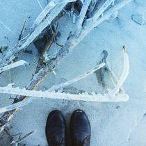 Winter Palette 2 by Rene Steiner