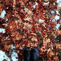 Winter Palette 6 by Rene Steiner