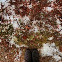 Winter Palette 8 von Rene Steiner