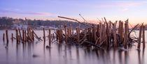Der See liegt still von Katja Bartz