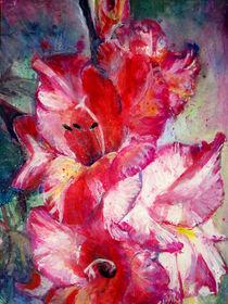 Rosa Gladiole von Renée König
